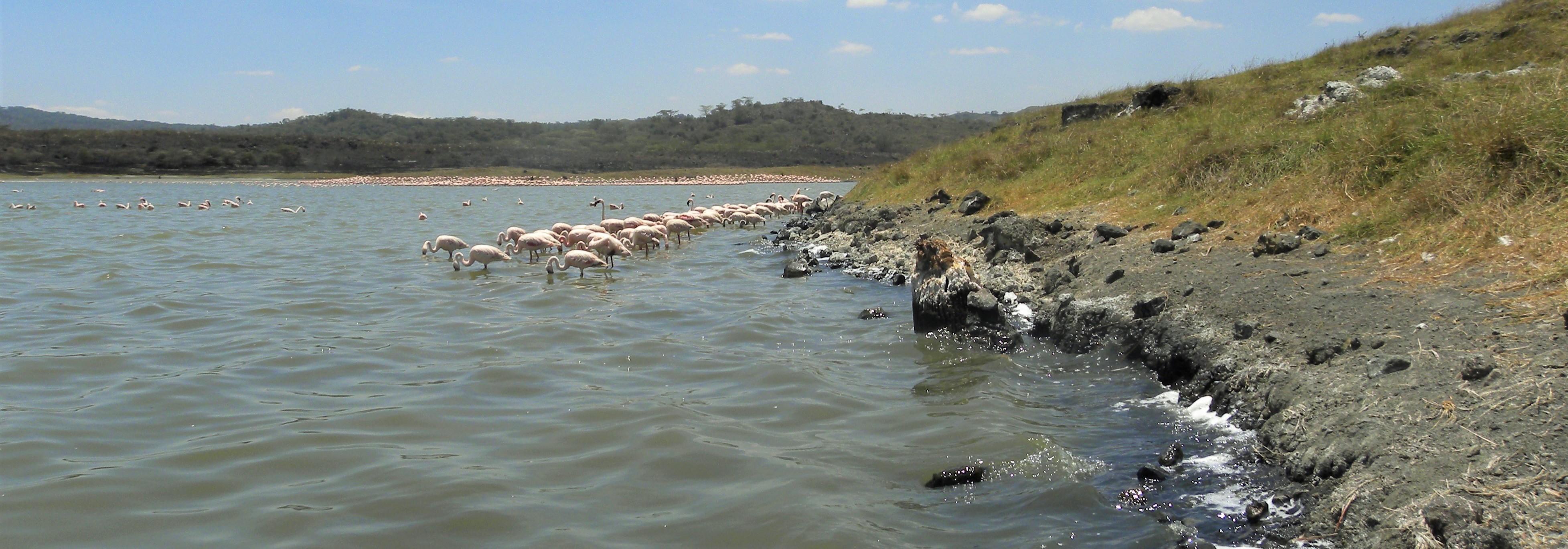 Arusha National Park-Lake Momela