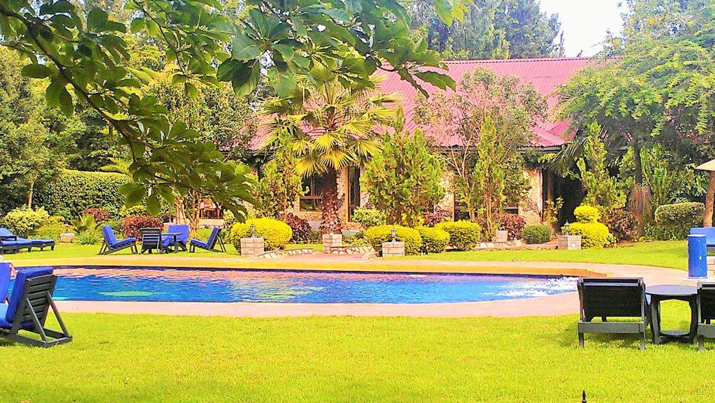 Bougainvillea lodge (4)