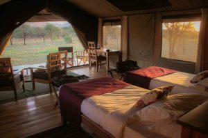 Hippo Trails Tented Camp